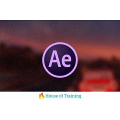 Soofos Online Cursus After Effects